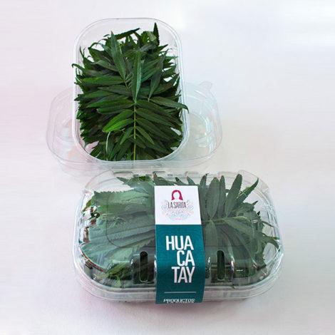 Fresh Huacatay - Peruvian black mint - La Sarita